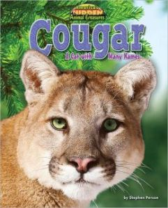 Cougar a cat with many names