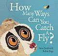 how many ways can you catch a fly