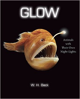 Glow animals with their own night lights