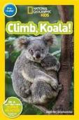 climb, koala