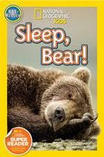 Sleep, bear