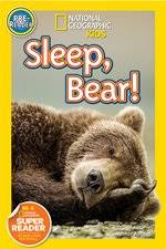 Sleep, bear
